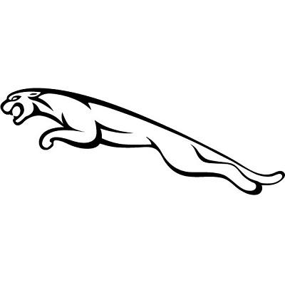 Кутийки за Jaguar